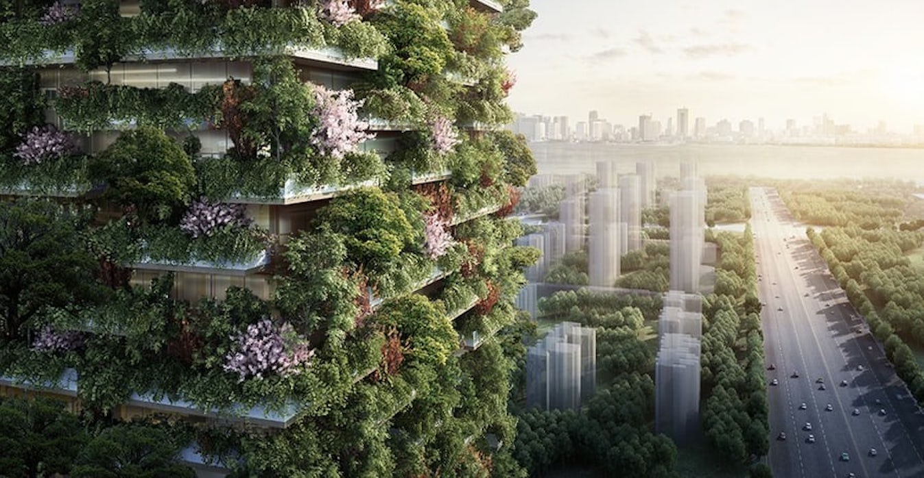 The project Vertical Forest helps to build
