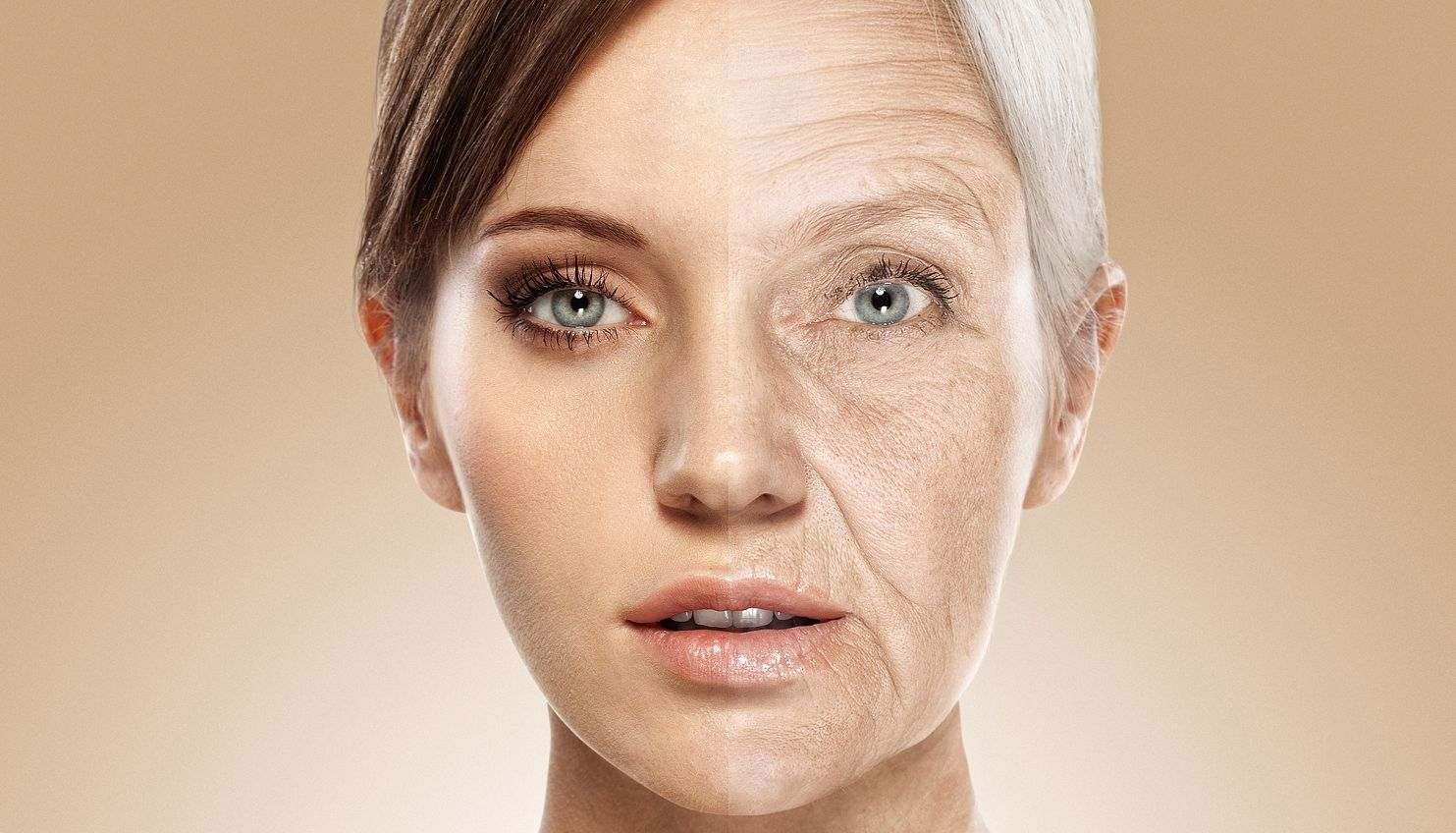 Scientists believe that the aging process cannot be stopped from a mathematical point of view