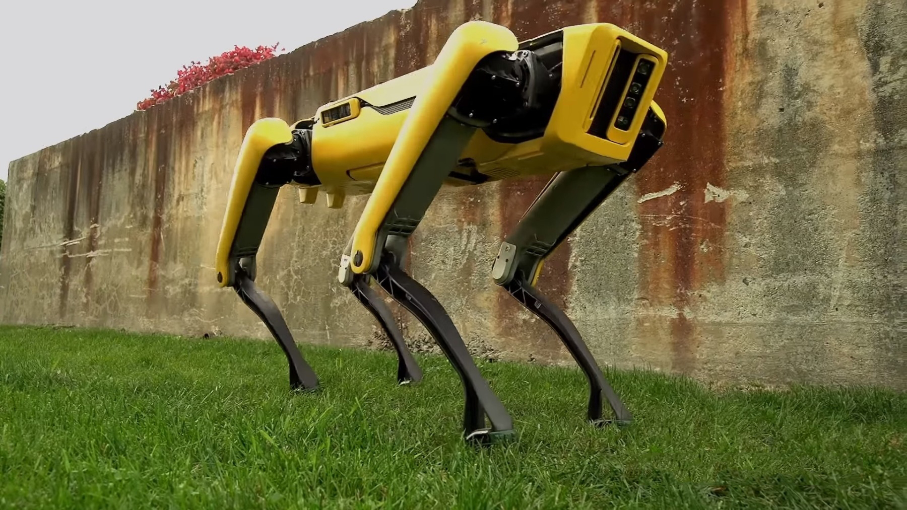 #video of the day | Boston Dynamics introduced its new robot