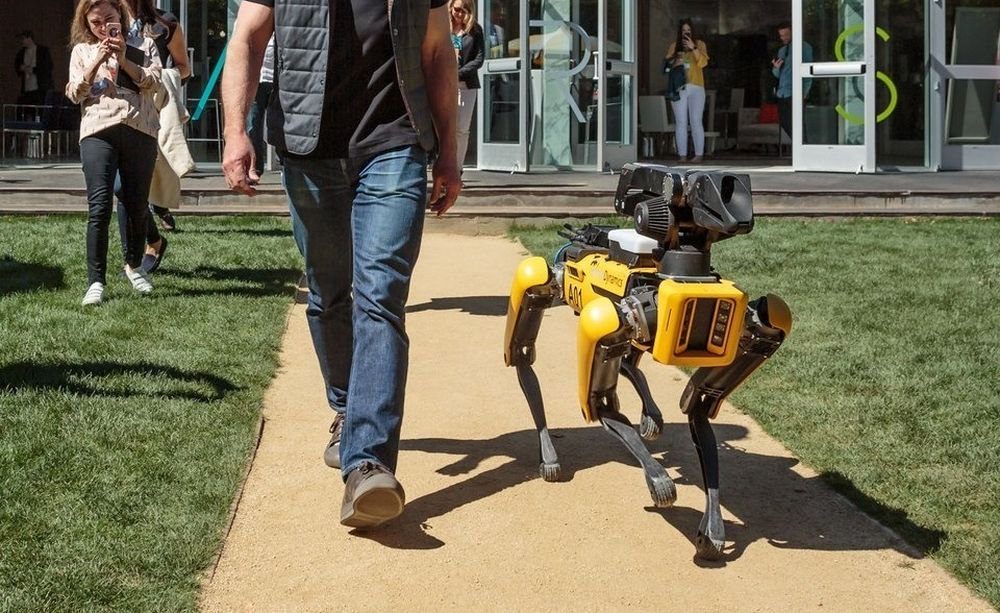 #photo of the day | the head of the Amazon walk the dog robot Boston Dynamics