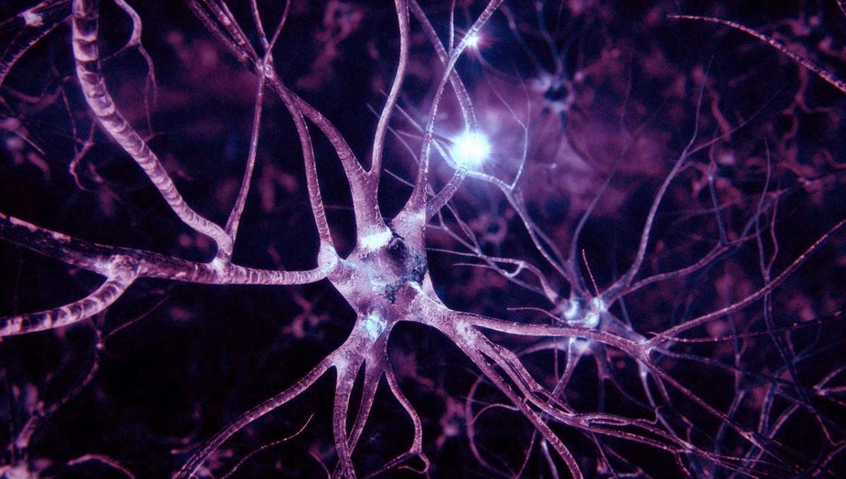 Doctors have learned to restore nerve cells