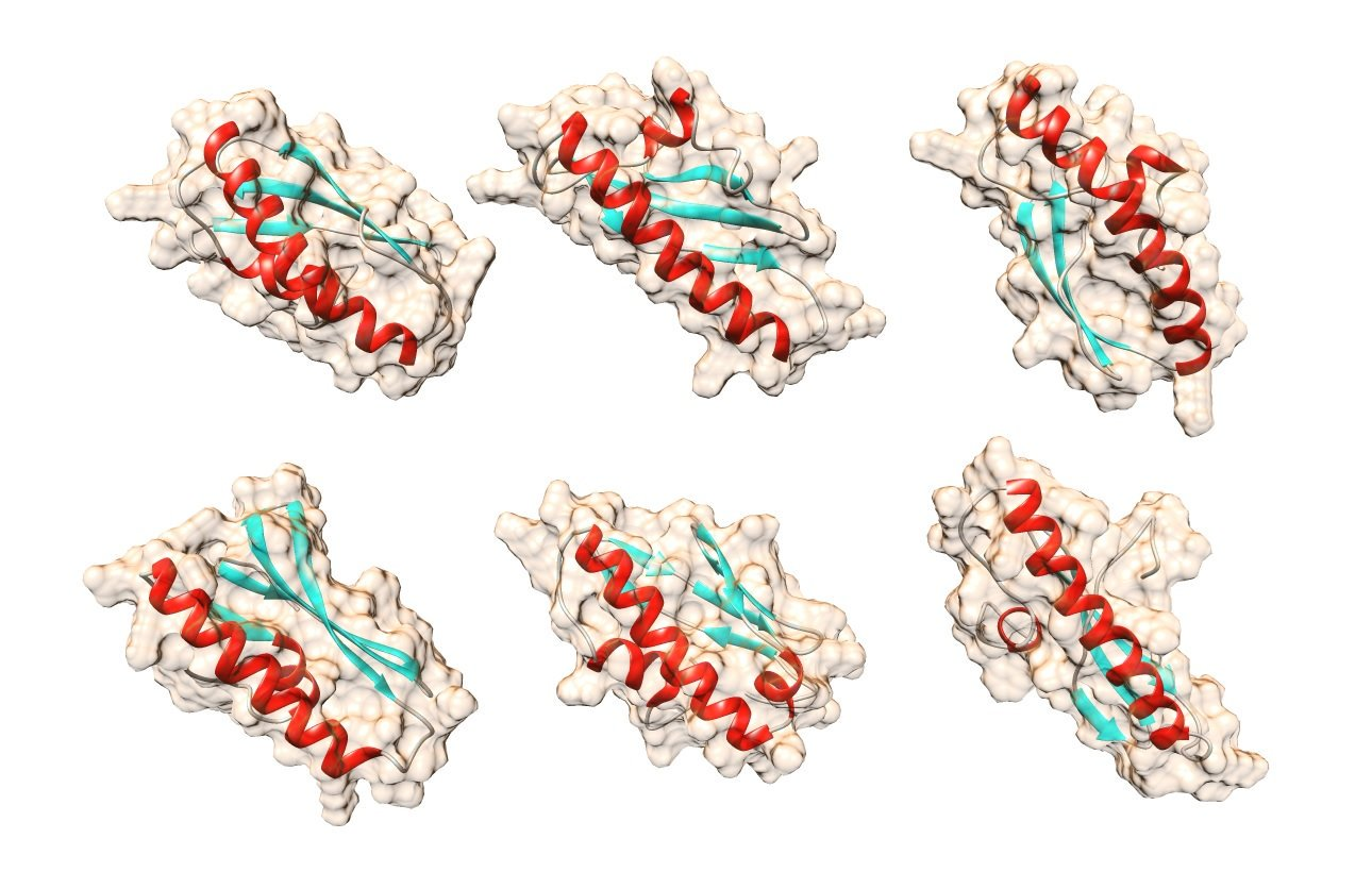 Created a new technology of mass sequencing of proteins