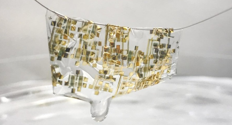 Stanford has developed a biodegradable and flexible electronic circuits