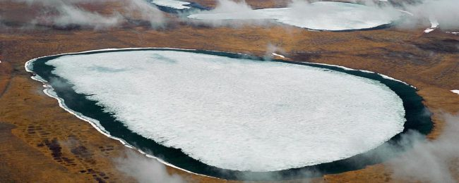 In terrestrial glaciers Wake up dangerous disease