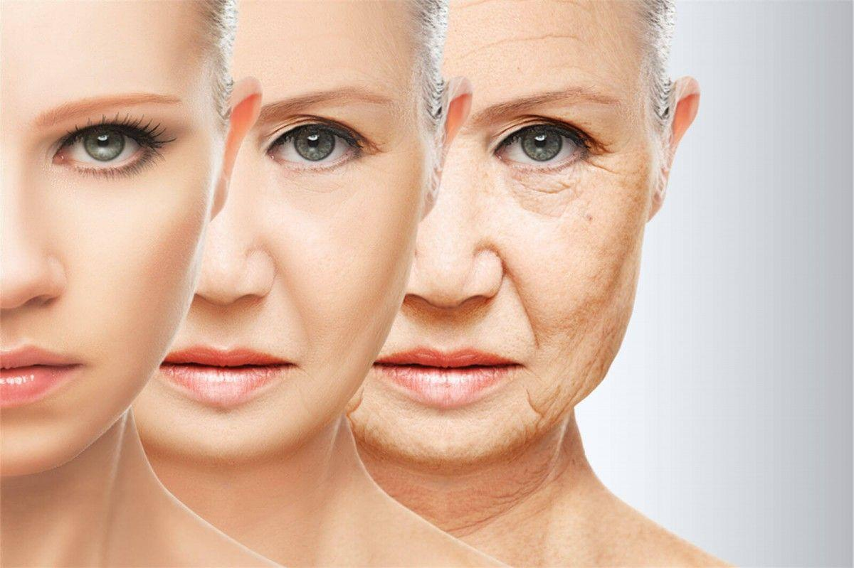 Discovered genes that play a key role in the aging process
