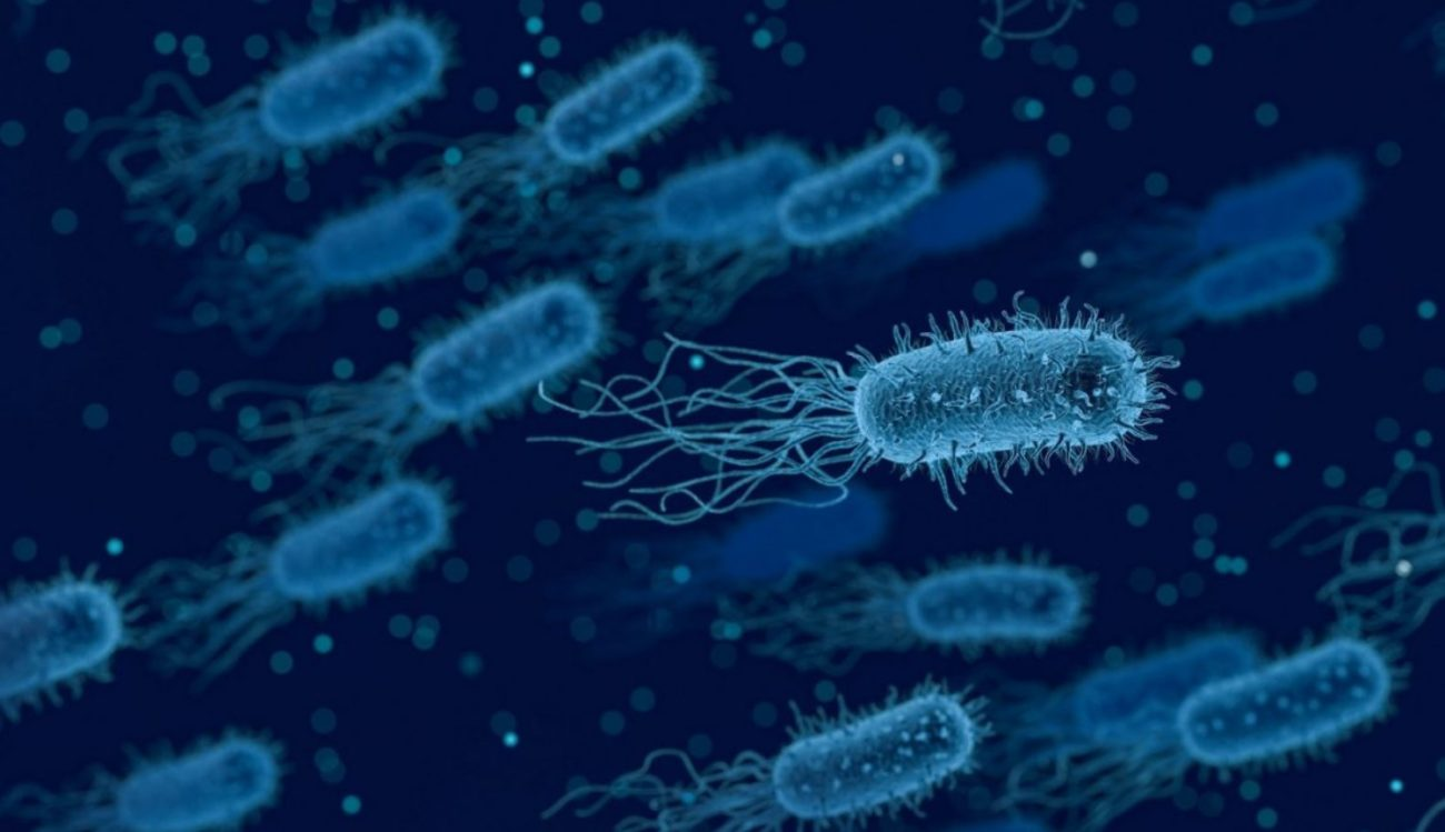 Scientists have learned to look for the bacteria generating electricity