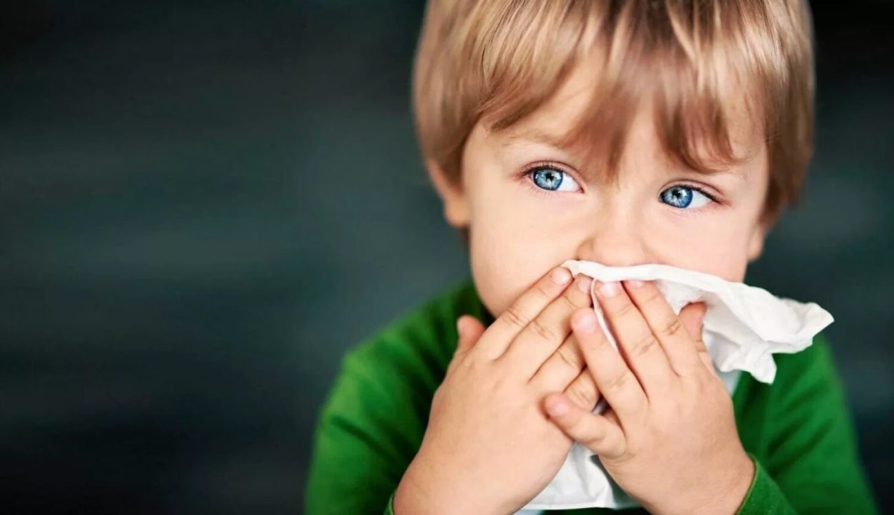 Bacteria in the nose can protect from the flu