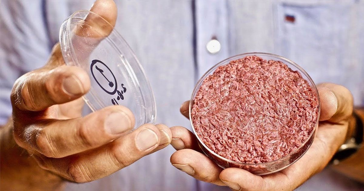 The production of artificial meat will benefit the environment