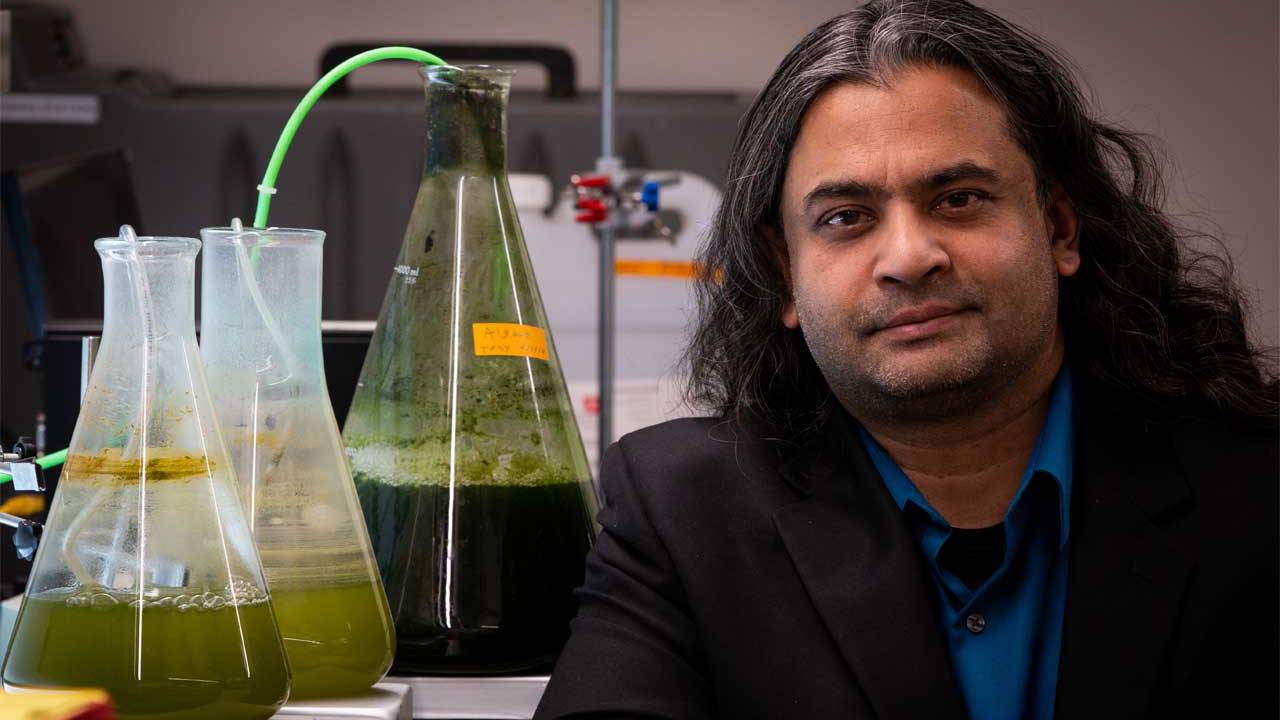Scientists have developed a cheap method for the production of biofuels from algae