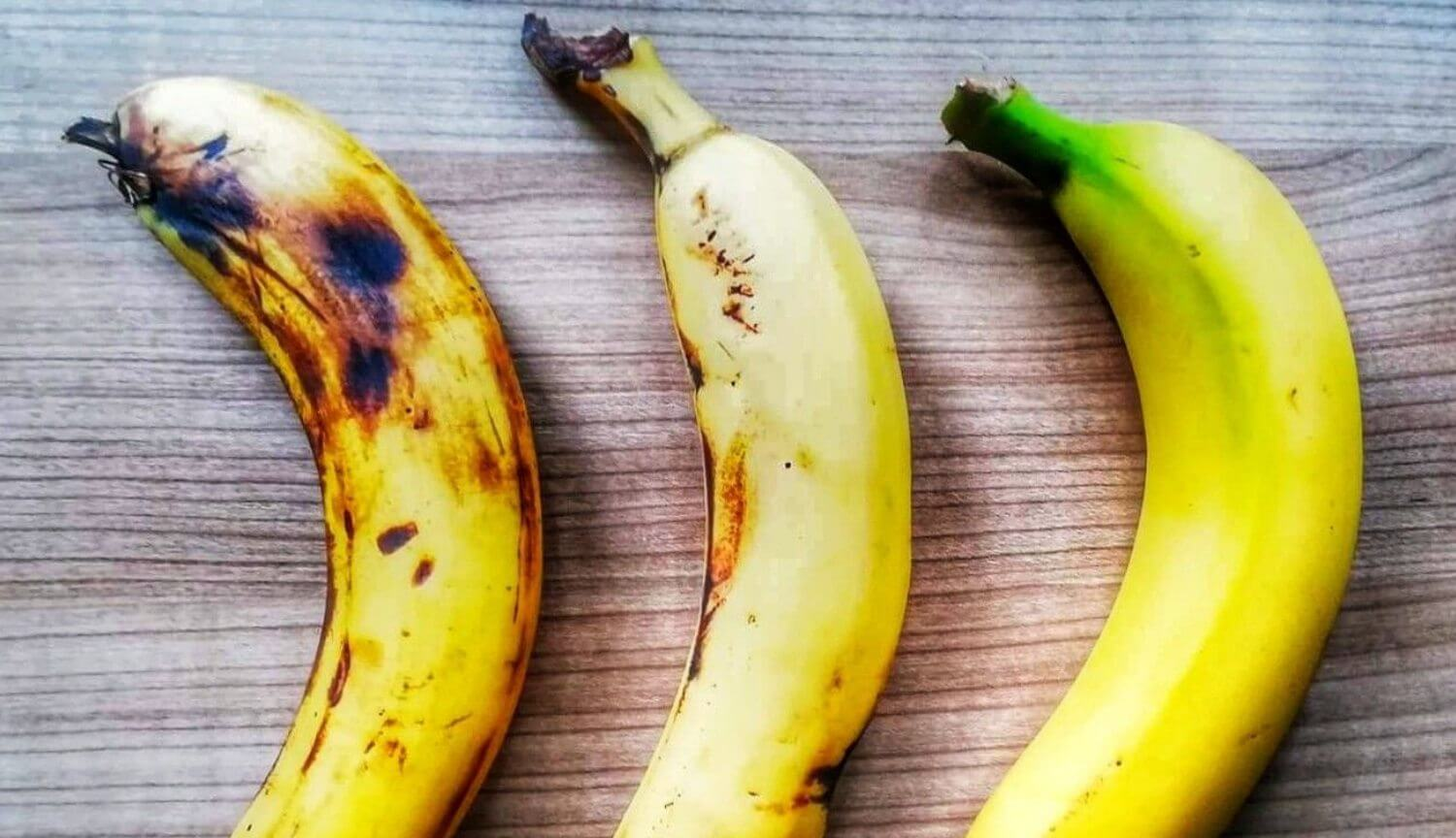 Why bananas could disappear from the face of the Earth?