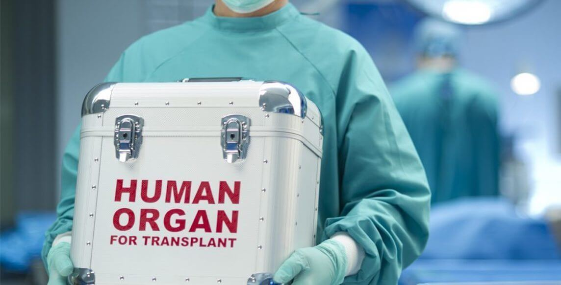 The transplantation of organs from animals to humans will happen this year