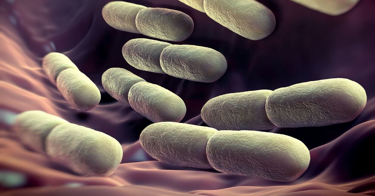 Intestinal bacteria can show your true age