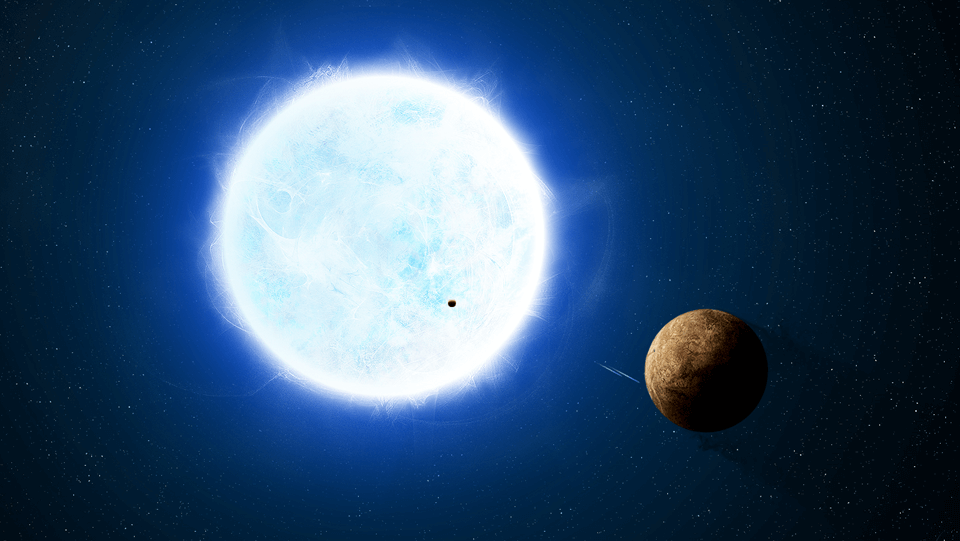 Can there be life next to a white dwarf?