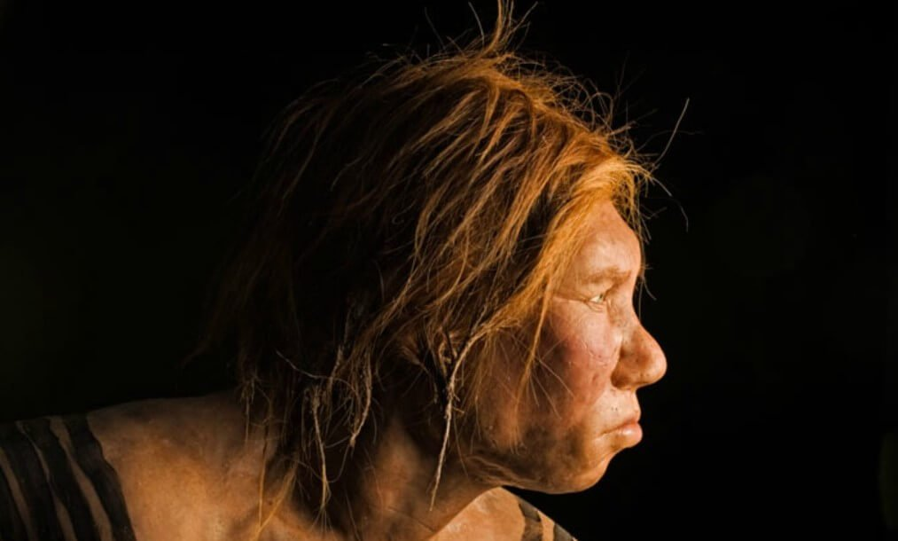 Why are scientists so sure that the Neanderthals were skilled swimmers?