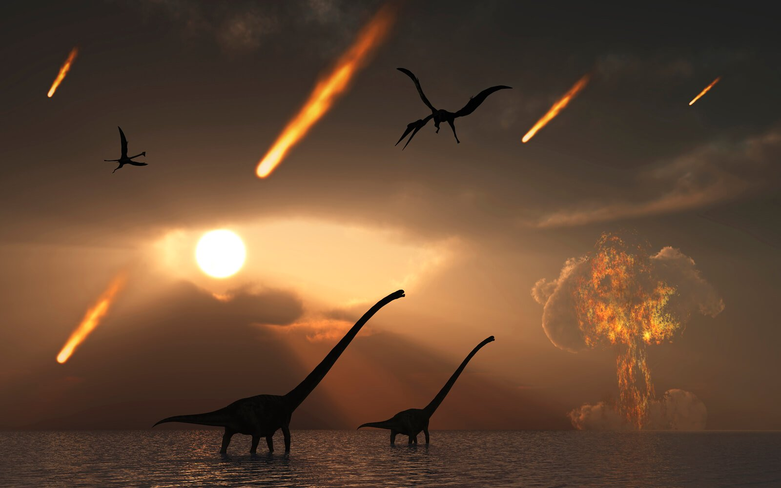 And yet the dinosaurs became extinct because of the impact of the Chicxulub asteroid, scientists have found