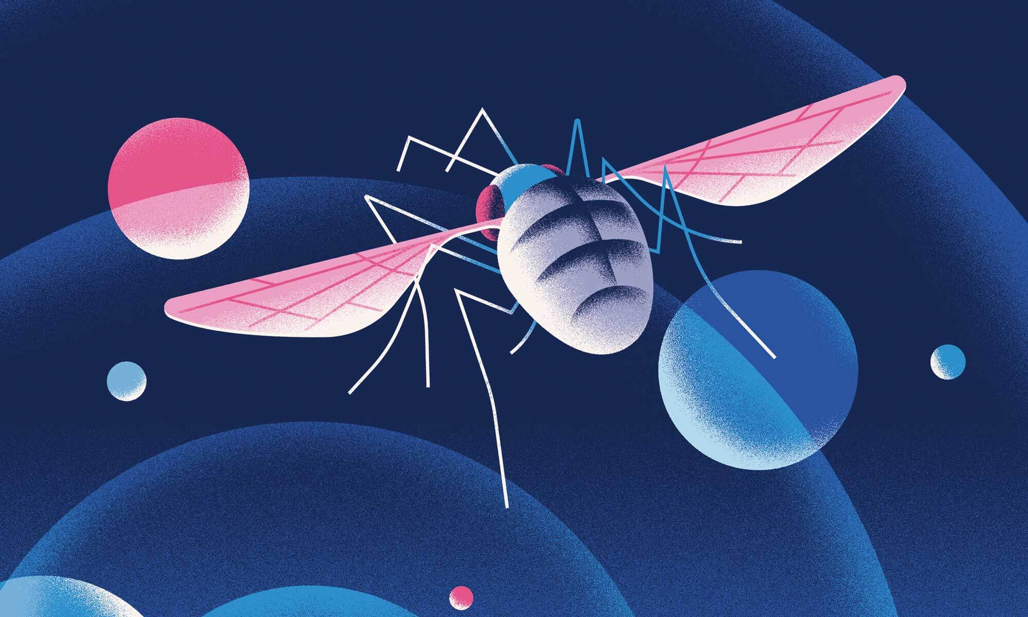Scientists have measured the minds of fruit flies. But why?